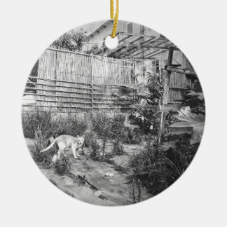 street cat ceramic ornament
