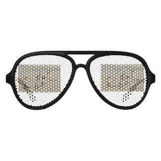 Street cats aviator sunglasses