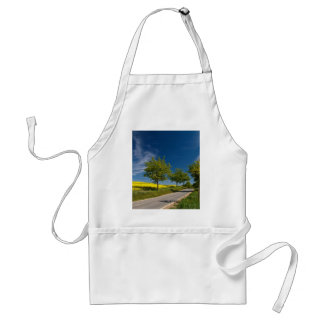 Street with trees and rape field aprons