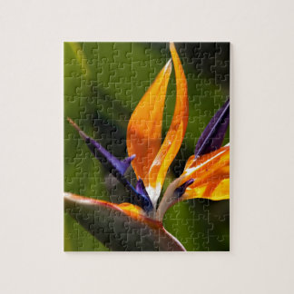 Strelitzia. Bird of paradise flower. Jigsaw Puzzle