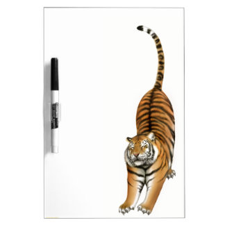 Stretching Bengal Tiger Dry Erase Board