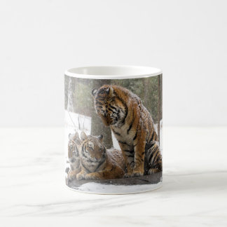 Stretching Tiger Coffee Mug