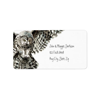 Striking Owl Bird Nature Custom Art