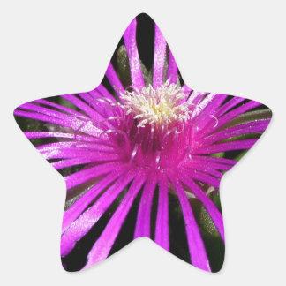 Strikingly Purple Star Sticker