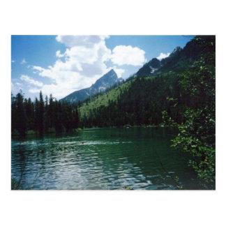 String Lake- Yellowstone Postcard