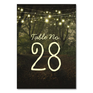 String lights tree path romantic table number card