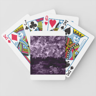 Stripe common coastal highway and cat poker deck