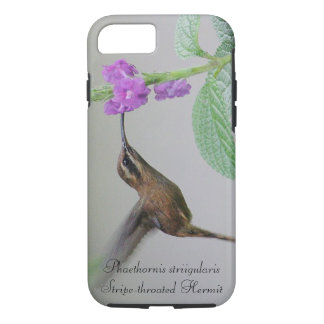 Stripe-throated Hermit iPhone 8/7 Case