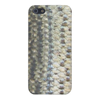 Striped Bass Skin iPhone Case Cover For iPhone 5/5S