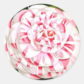 Striped candy cane camellia classic round sticker