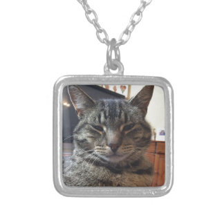 Striped cat silver plated necklace