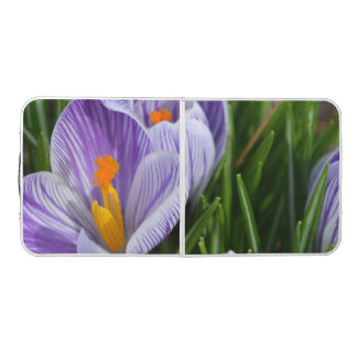 Striped Crocus Pong Table