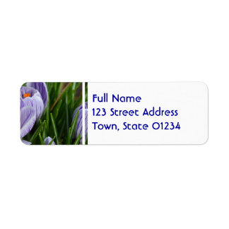 Striped Crocus Return Address Label