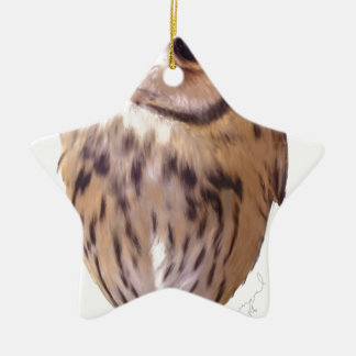 Striped owl ceramic star ornament