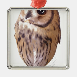 Striped owl Silver-Colored square ornament