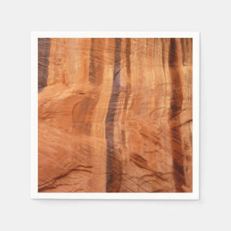 Striped Rock of Double Arch Alcove II Zion Park Disposable Napkins