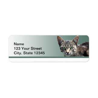 Striped Tabby with Green Eyes Return Address Label