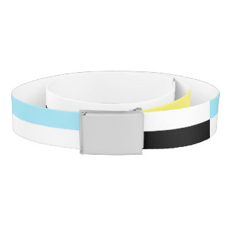 stripes and colours belt