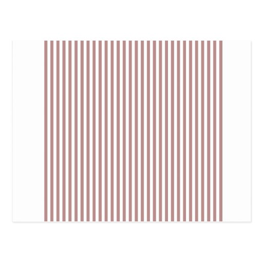 Stripes - White and Rosy Brown Postcard
