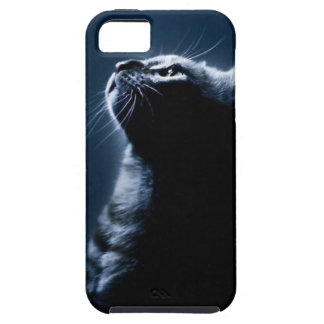 Stripped Cat in the Moonlight iPhone 5 Case