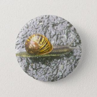 Stripy Snail Button