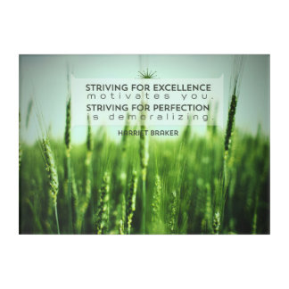 Striving For Excellence Acrylic Print