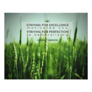 Striving For Excellence Poster