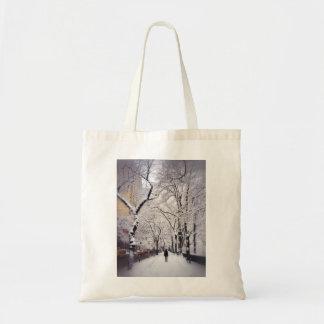 Strolling A Snowy City Sidewalk