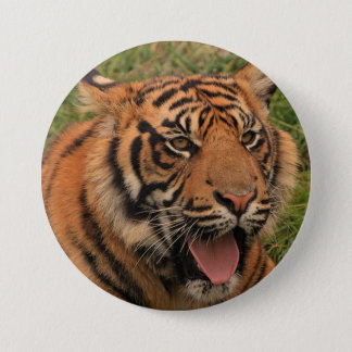 Strong Tiger 3 Inch Round Button