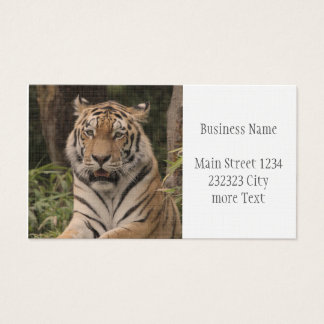 Strong Tiger Business Card