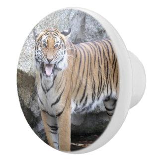 Strong Tiger Ceramic Knob