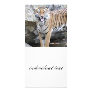 Strong Tiger Picture Card