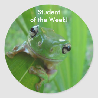 Student of the Week Stickers - Smiling Frog