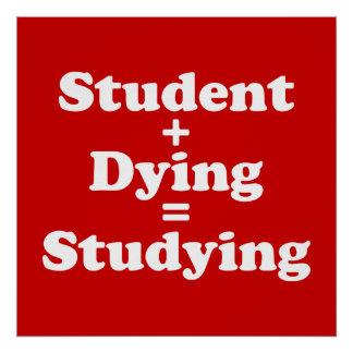 Student Plus Dying Equals Studying Poster
