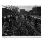 Students and Bicycles near the Library, Feb. 1967 Poster
