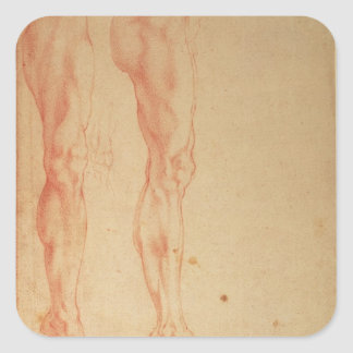 Studies of Legs and Arms Square Sticker