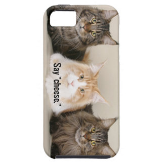 "Studio Photo - 3 Cats Saying ""Cheese"" Case For The iPhone 5"