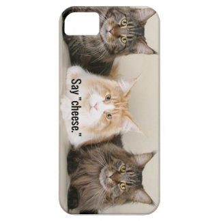 "Studio Photo - 3 Cats Saying ""Cheese"" iPhone 5 Cover"