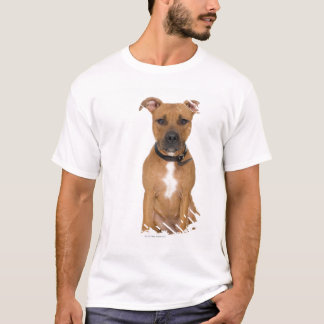 Studio portrait of American pit bull puppy 3 T-Shirt