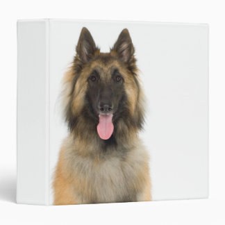 Studio portrait of Belgian shepherd dog Vinyl Binder