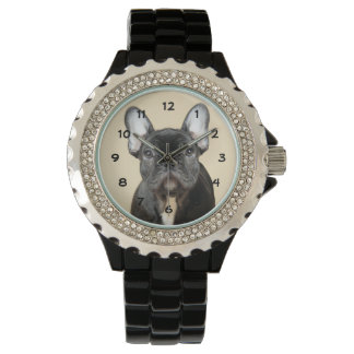 Studio portrait of French bulldog puppy standing Wrist Watch