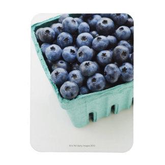 Studio shot of blueberries magnet
