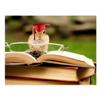 Studious Chipmunk Graduate Postcard