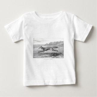Study of a Fox Baby T-Shirt