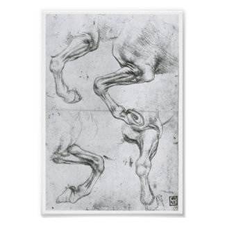 Study of a Horse's Legs, Leonardo Da Vinci Poster