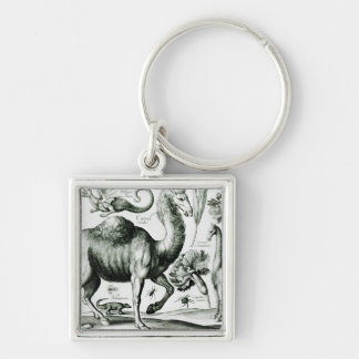 Study of Animals and Flowers, engraved Silver-Colored Square Keychain