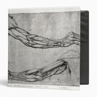 Study of Arms 3 Ring Binder