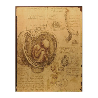 Study of baby fetus by Leonardo da Vinci Wood Print