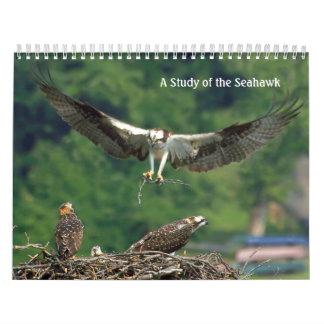 Study of the Seahawk Calendar