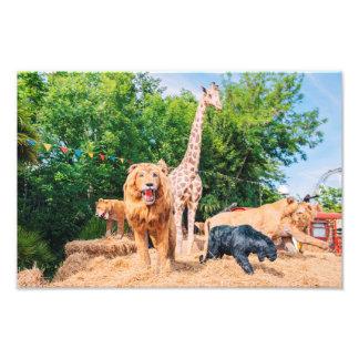 Stuffed animals photo print